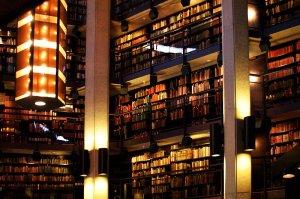 IL - library 8