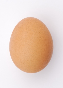 A chicken's egg