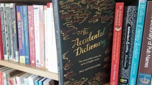 accidental-dictionary-paul-anthony-jones