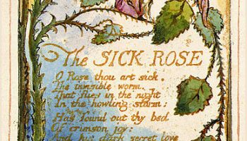 A Short Analysis of William Blake s  A Poison