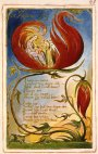 A Short Analysis of William Blake's 'Infant Joy'